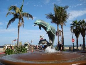 Santa Barbara Dolphins